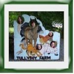 Tullyboy Farm pic placard